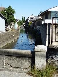 入舟川2.jpg