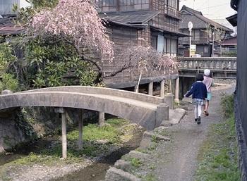 入舟川3.jpg