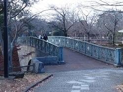 公園内の橋1.jpg