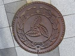 南郷村マンホール.jpg