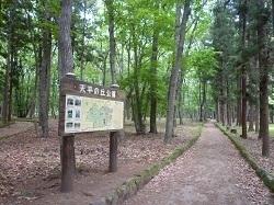 天平の丘公園1.jpg