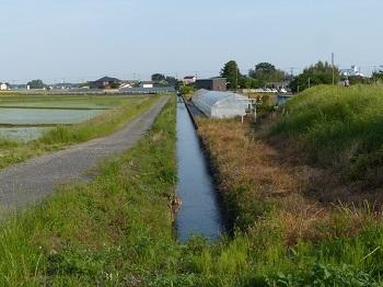 小山市生駒の用水路.jpg