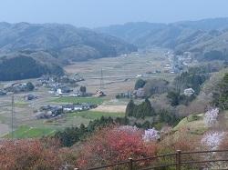山頂からの眺め.jpg