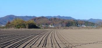 岩舟町静の秋景色.jpg