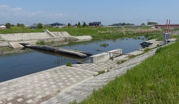 川島堰.jpg