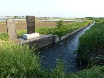 川島堰から取水した用水路.jpg
