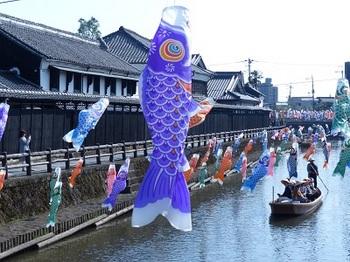 巴波川の鯉幟.jpg