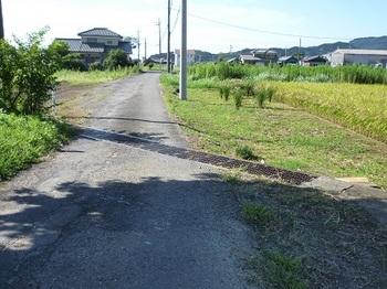 斜めに走る水路.jpg