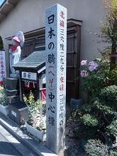 日本の臍中心標.jpg