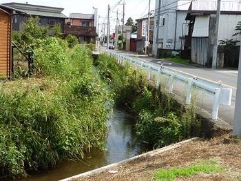 旧鍋山街道脇を流れる旧赤津川.jpg