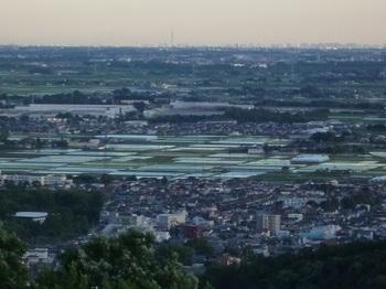 東京スカイツリー遠望.jpg