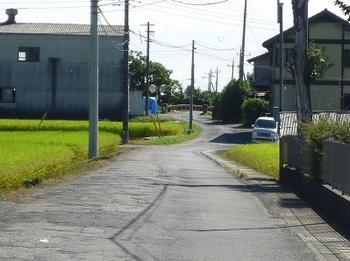 樋口橋方向に流れる水路.jpg