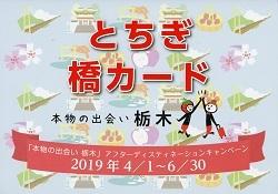 橋カードホルダー表紙.jpg