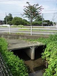 現在の赤津川橋辺り.jpg
