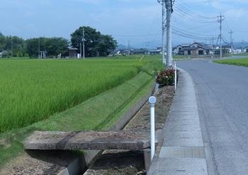 稲荷神社3.jpg