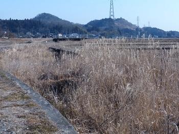 続く無名橋.jpg