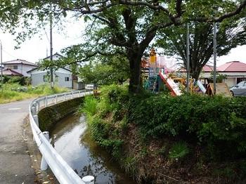 若葉幼稚園付近.jpg