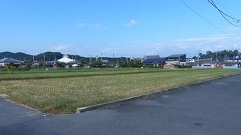 薗部町に残る水田.jpg