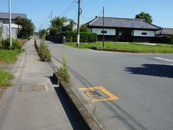 道路西側の暗渠化された風野堀.jpg