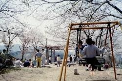 錦着山公園1988年4月2.jpg