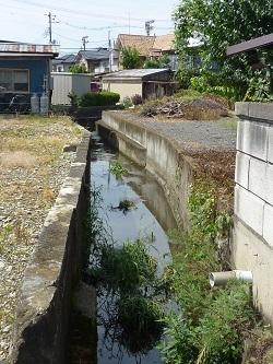 長沼川4.jpg