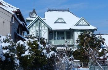 雪化粧した栃木病院.jpg