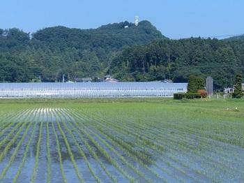 鴻巣山遠望.jpg