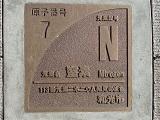 7窒素.jpg